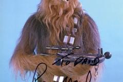 Chewbacca's autograph (Peter Mayhew)